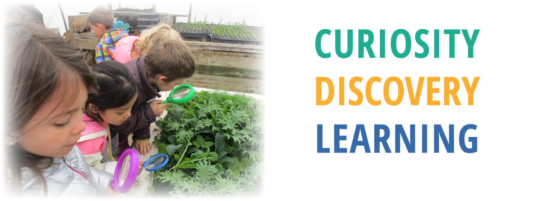 Text: Curiosity, discovery, learning. Image: Children gardening